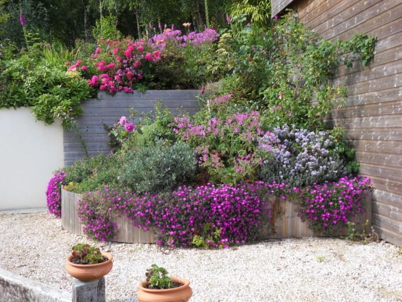 Floraisons du mois de juin page 3 for Les jardins 4 saisons