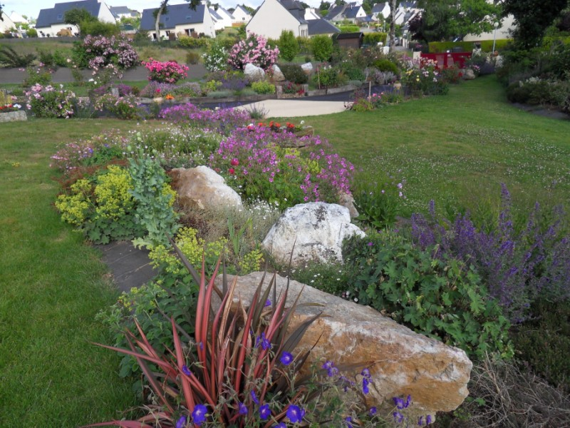 Floraisons du mois de juin page 3 - Image de rocaille ...