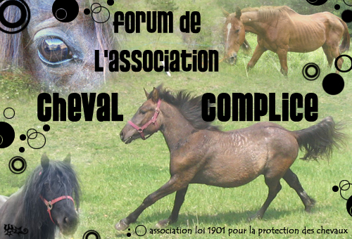 forum de l'association Cheval Complice