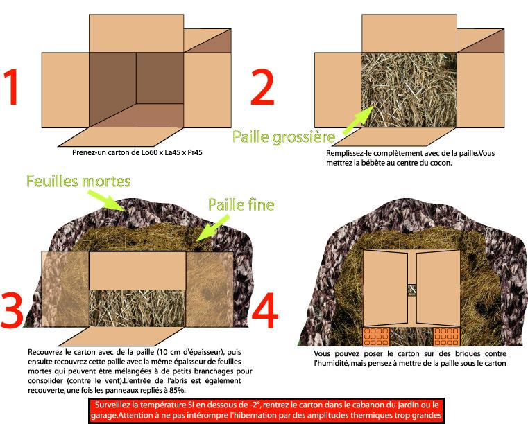 terrarium enclos bassin. Black Bedroom Furniture Sets. Home Design Ideas