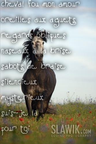 Poème Sur Image Pour Mon Frère