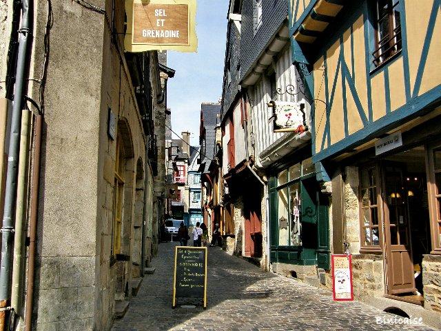 Voyage en Pays de Loire. dans Pays de Loire et Touraine. vitre_10