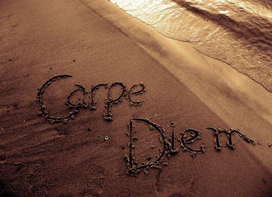 Carpe diem for Recherche carpe