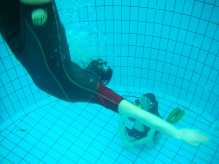 Cpj orca ffessm orca un club qui se bouge for Sportica piscine