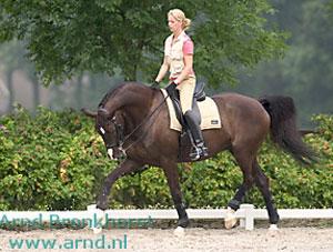 Scandinavian Dressage / Pia MUNCK