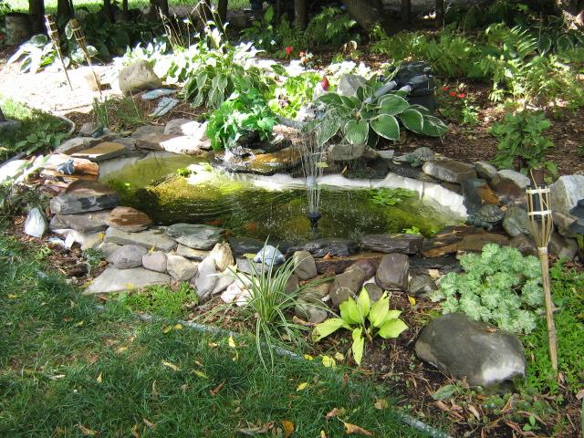 Afficher le sujet un petit bassin tr s artisanal - Petit bassin pour jardin ...