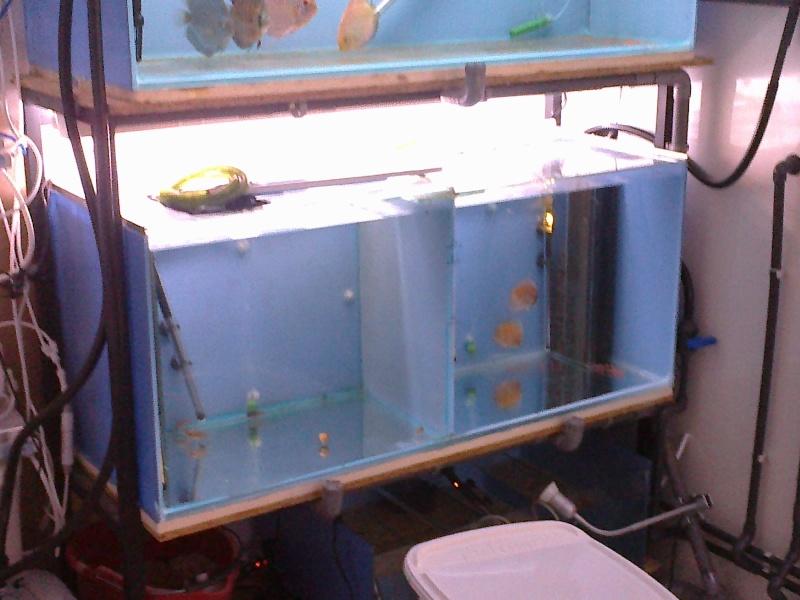Vend aquarium filtres externe for Vend aquarium