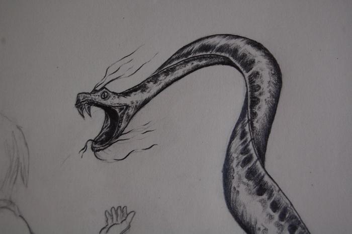 Petite attaque de serpent - Dessin de serpent ...