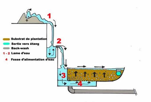 Epuration des eaux usees - Lagunage des eaux usees ...