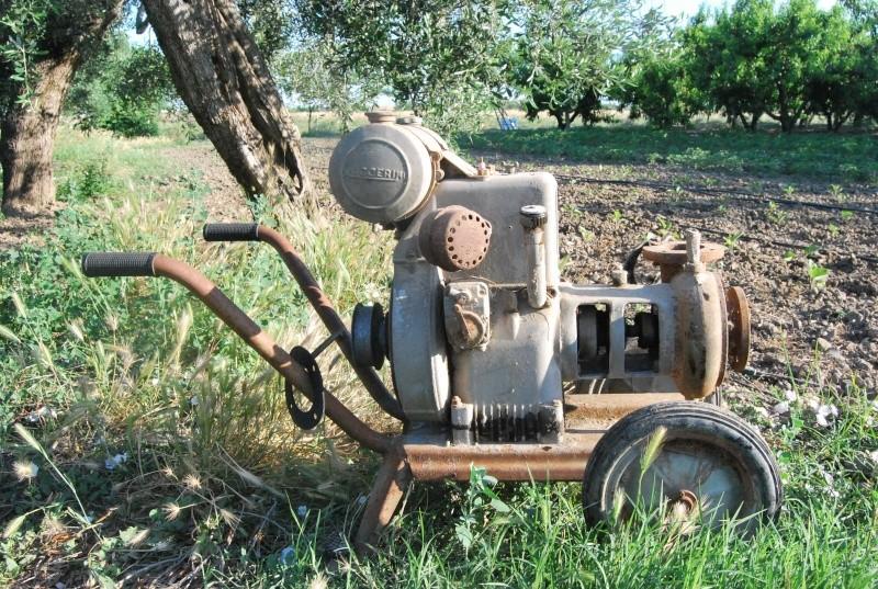 Motopompa ruggerini mulino elettrico per cereali for Girandole per irrigazione
